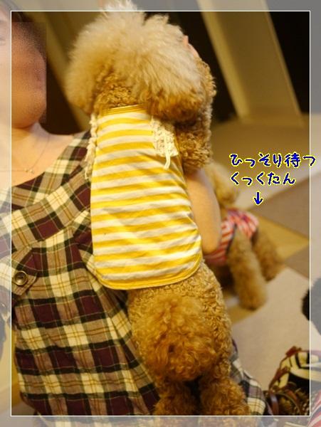 b3_20120603224249.jpg