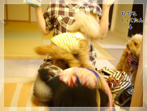 b4_20120603224248.jpg