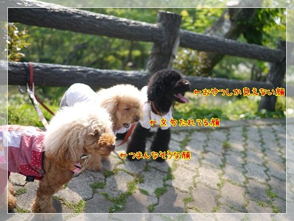 b7_20120513033702.jpg