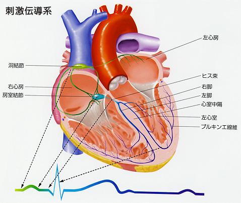 pict_20120724194237.jpg