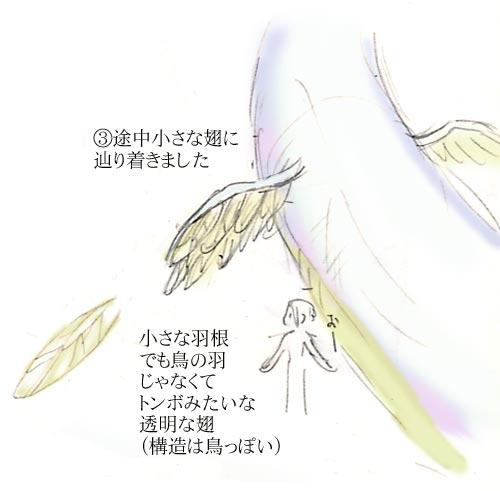 あ、翅!(羽根?)