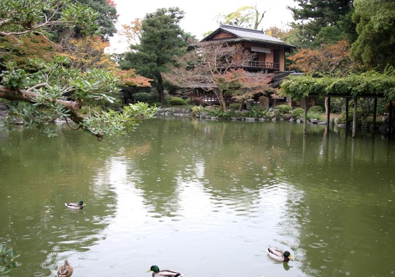 京都御苑2121105