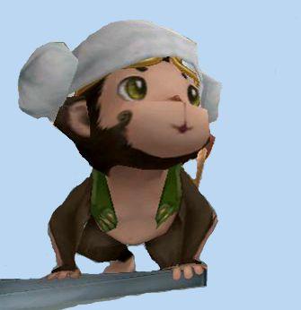monky(2).jpg