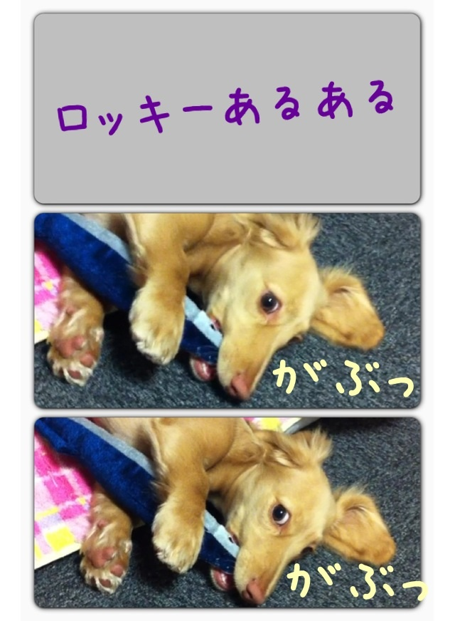 image_20130302231050.jpg