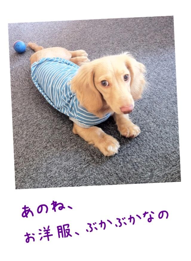 image_20130320140838.jpg