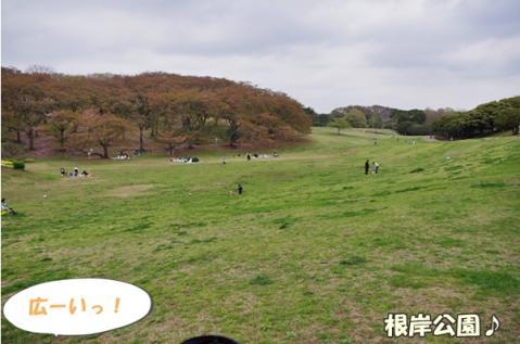 根岸公園②