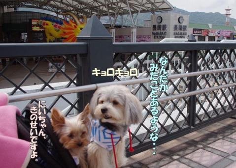 新幹線の旅④