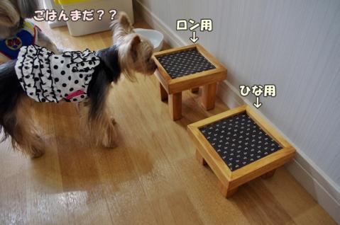 テーブル④