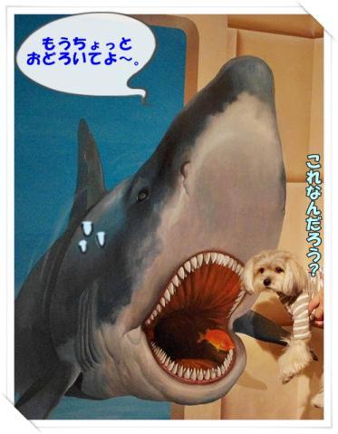 軽井沢 2日目⑩