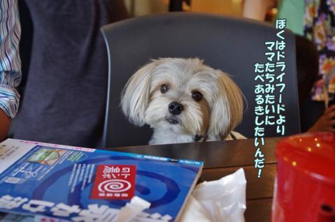 軽井沢 2日目21