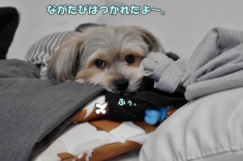 軽井沢 2日目25