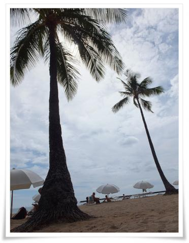 ハワイ34