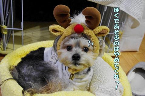 クリスマスパーティー②