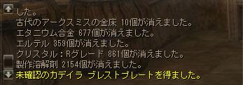 20130214カデ重上その2