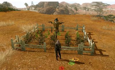20130715農園その1