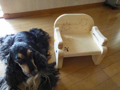 はなちゃんの椅子