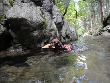 平野川水源