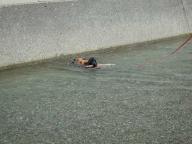 ゆめちゃんの泳ぎ