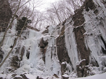 2011.02.11群馬 綾織 (2)