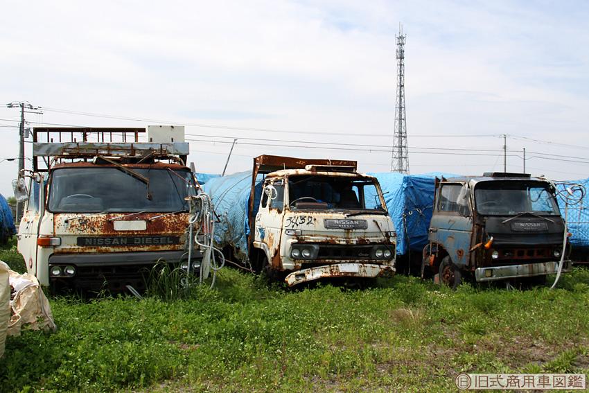 Trucks_All_2.jpg
