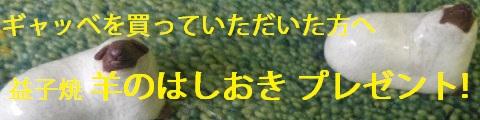 sheep_banner.jpg