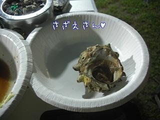 2012.8.2 11