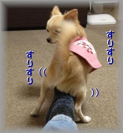 20121129-02_convert_20121129160010.jpg