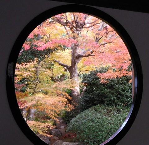 京都の紅葉 074