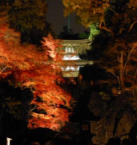 京都 滋賀石山寺、紅葉 034