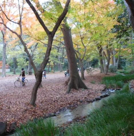 京都、散策 028