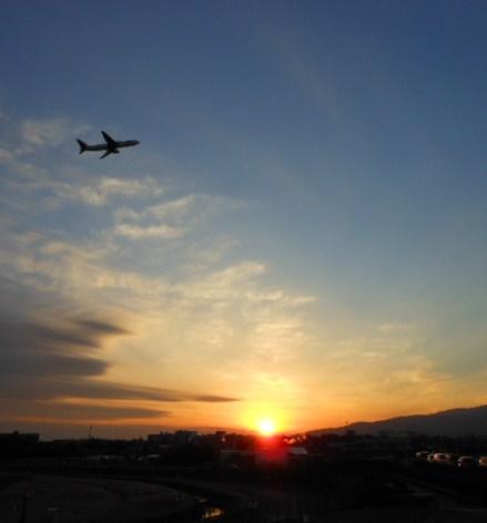 伊丹空港 御堂筋イルミネーション 021