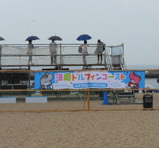 須磨 イルカ 008