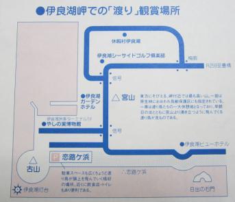 伊良湖岬での渡り観賞場所