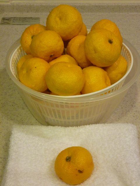 柚子 拭き取り