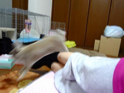 10_20120829214121.jpg