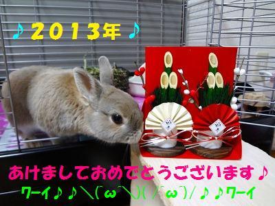 11_20130102010109.jpg