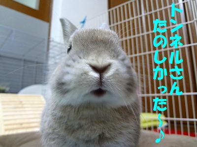 16_20121108020356.jpg