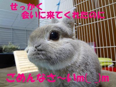 1_20121030033701.jpg
