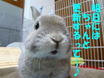 2_20121030033701.jpg