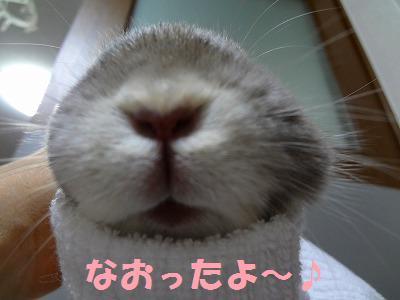 2_20121213015503.jpg