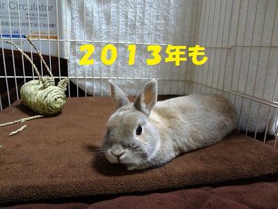 3_20121229043151.jpg