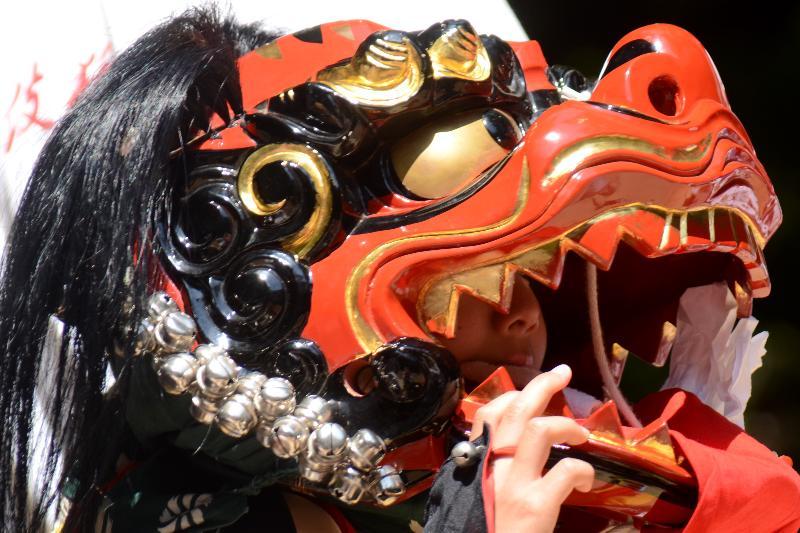 今治春祭り 多伎神社 古谷多伎獅子保存会