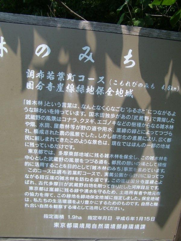090514zoukibayashi3