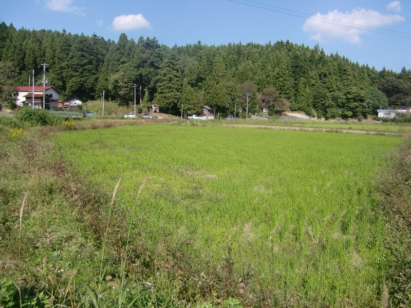 121013satoyama2