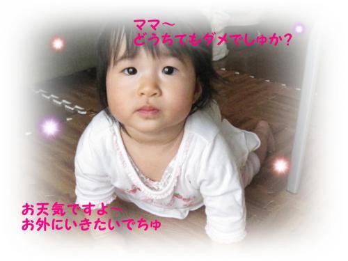 IMG_0778_01.jpg