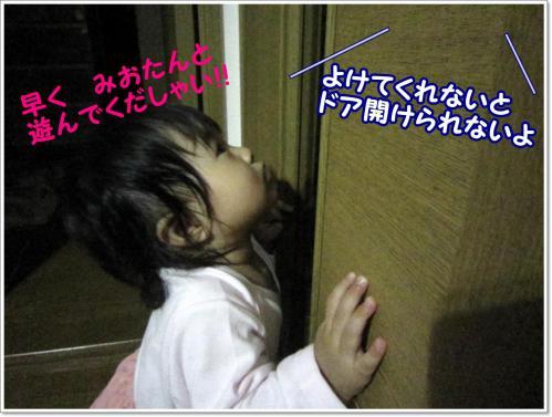 IMG_0807_01.jpg