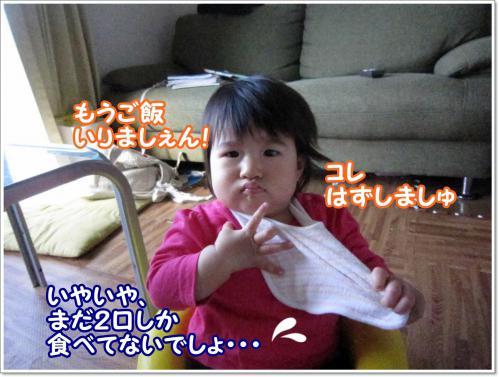 IMG_0814_01.jpg