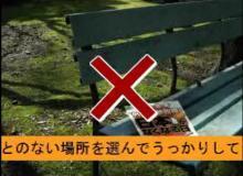 ☆sakuraraボード☆-ukkari2