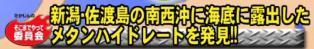 ☆sakuraraボード☆-T23