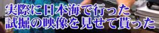 ☆sakuraraボード☆-T24